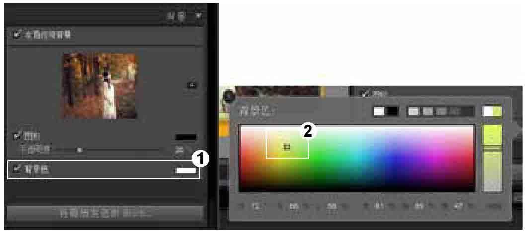 Lightroom如何设置画册文本、类型和背景